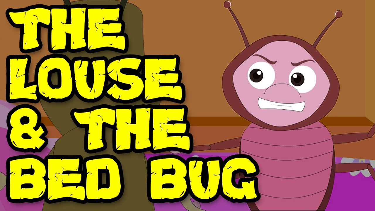 The Louse And The Bed Bug Story Youtube