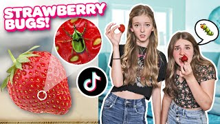 We TESTED Viral TikTok Life Hacks to See if They Work **SHOCKING CHALLENGE**💯🍓|Emily Dobson
