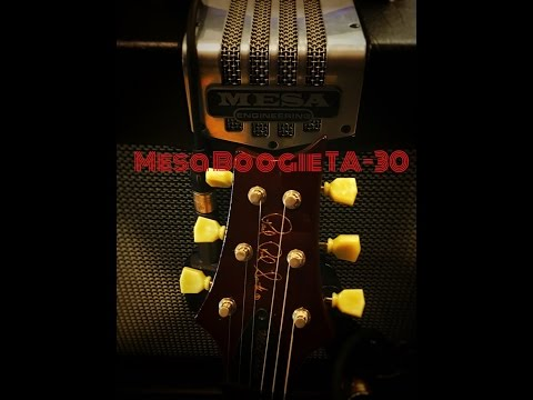 Mesa Boogie TA-30: The Swiss Army Knife of Amps