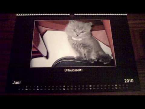 Monty Kalender 2010 / Monty Calendar 2010 / Monty Kalendarz 2010