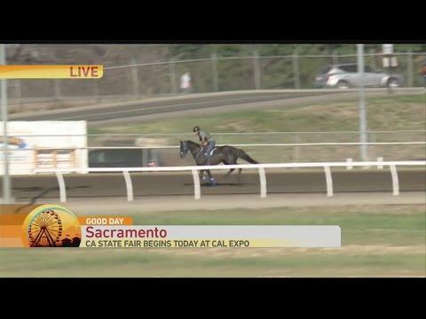 CA State Fair: Horse Racing