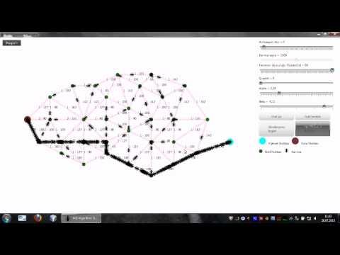 Ant Algorithm Simulator