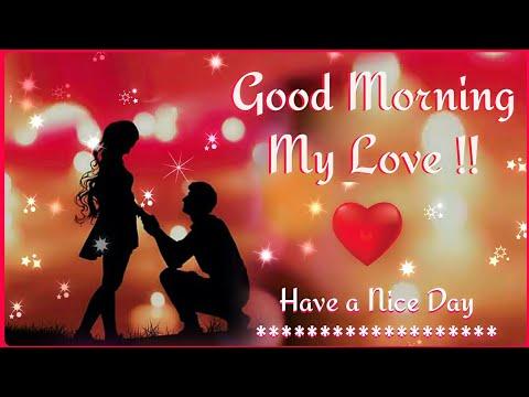 🌸 Good Morning Love  Whatsapp Status Video 🌸 | Good Morning Wish Video For Whatsapp 💖