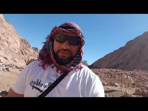 Holy Land Tour Part 6  Egypt Mt Sinai
