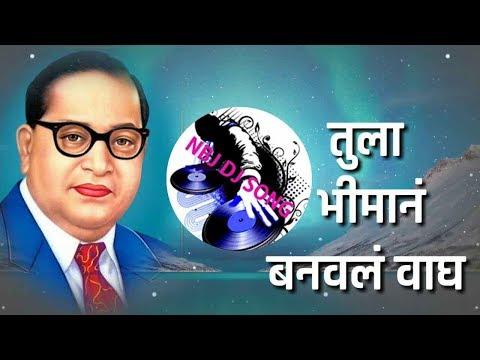 Tula Bhiman Banaval Wagh Electro House Mix - Dj