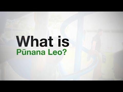 ʻAha Pūnana Leo | What is Pūnana Leo?