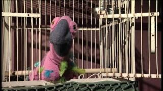 The Parrot Monologues: Klingon