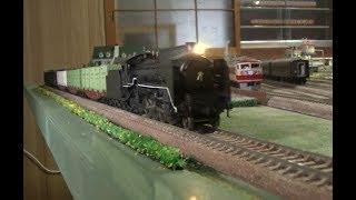 【16番(HO)】D51半流(アダチ)+貨物列車