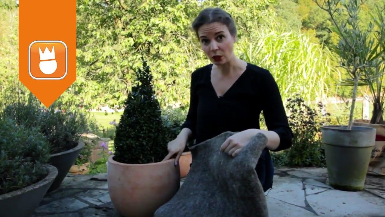 Winterschutz Fur Kubelpflanzen Obi Gartenzeit Youtube