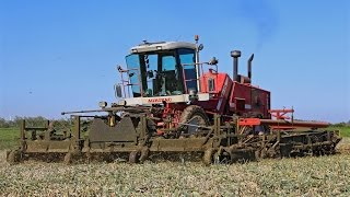 XXL Onion Harvest | 6,75 m wide 3 bed custom harvester | Harvest 2015