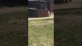 Project Fight Between Two Women