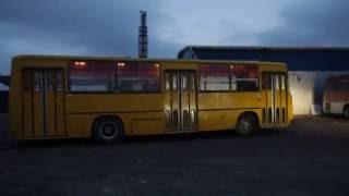 Покупка, перегон и тест-драйв Икарус 260 - «Желтый кот в мешке»