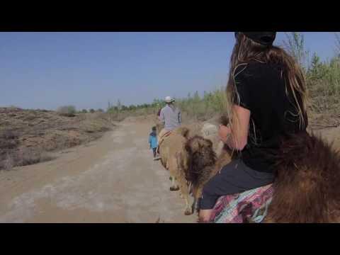 Inner Mongolia - Grasslands & Desert