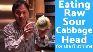 Eating a Fermented Sour Cabbage Head with Natural Probiotics