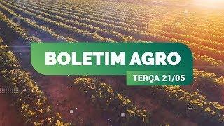 AGRICULTURA - Sul do Brasil pode ter geada ainda esta semana