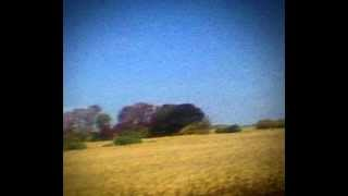 Sun Kil Moon - I Can't Live Without My Mothers Love