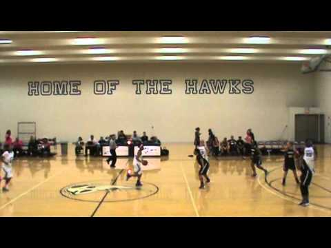 Henry Ford Lady Hawks V Schoolcraft College