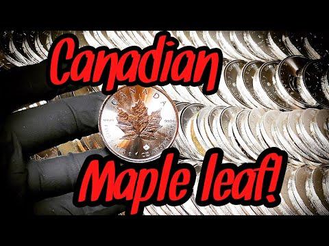 Canadian Silver Maple Leaf!