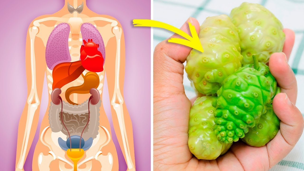 What Can Noni Juice Do for Your Body? (Noni Juice Benefits)