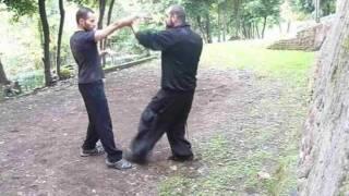 Dian xue Emei (colpire punti vitali) - Scuola Kung fu Emei Huo tian long