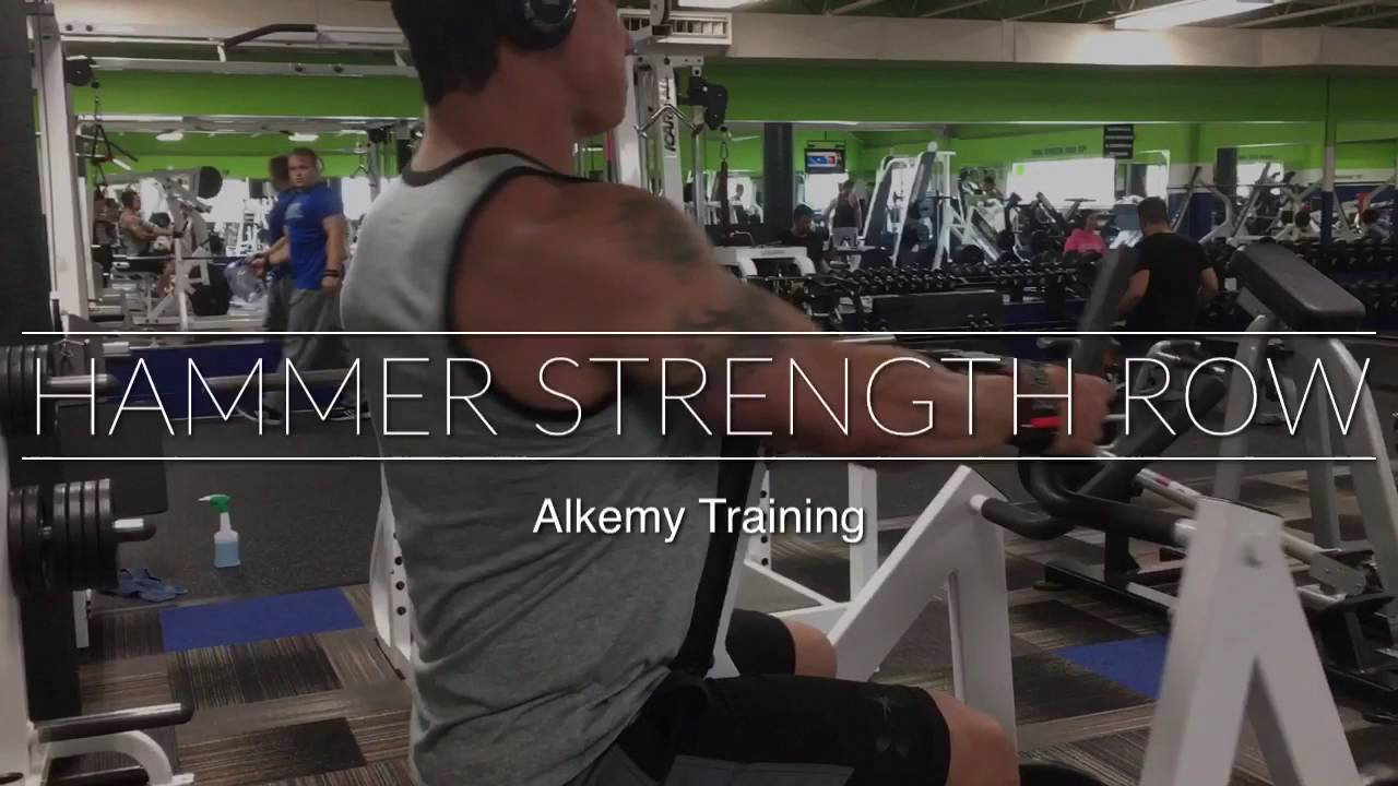 Hammer Strength Row Machine - Back Exercise - Alkemy Training