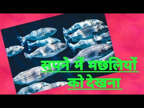Sapne Me Machliyon Ko Dekhnaसपने में मछलियों को देखने का फल।