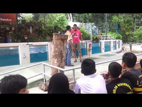 Animal Show @ Zoo Negara Show Amphitheatre, Kuala Lumpur