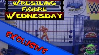 Wrestling Figure Wednesday EXCLUSIVE: Wicked Cool Toys - WWE Authentic Scale Classic Steel Cage