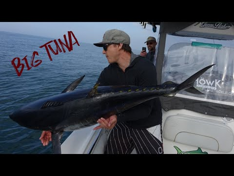 Tuna Fishing - Ebro Delta