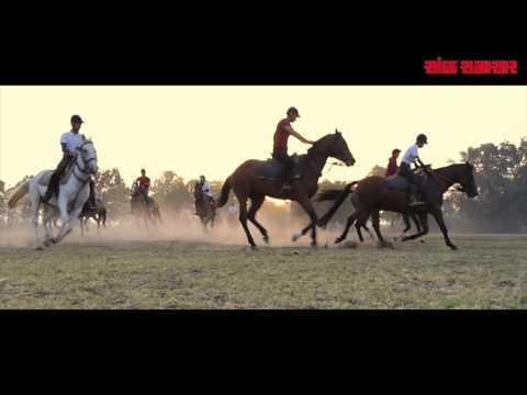 Game Maari Che : IPL Team Gujarat Lion's theme song