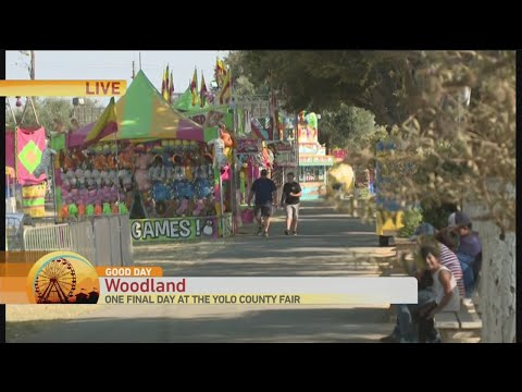 The Yolo County Fair