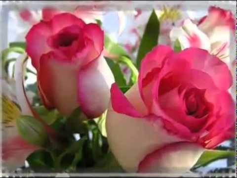 Поздравления с юбилеем любимую женщину » Красивые слова