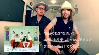 「ZEPPIN vol.2」開催! ☆チケット情報⇒ http://w.pia.jp/t/00067271/ ...