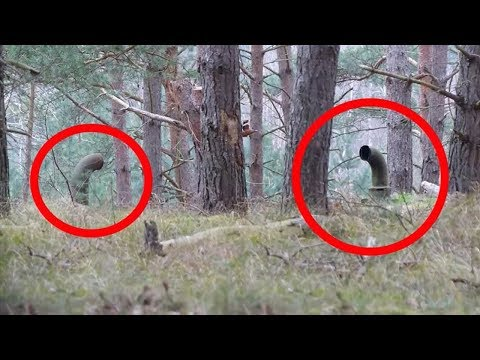 5 Scariest Things Caught By Campers! #2