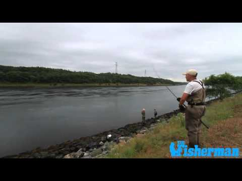 How To Work A Pencil Popper For Striped Bass