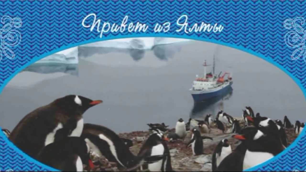 6. Гренландия: Апофеоз; в Ялте пингвины. Greenland: The Apotheosis of travel.