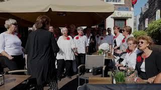 Open Monumentendag Haarlem The Amstel River Singers uit Amstelveen