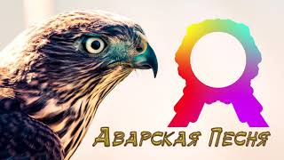 Аварская Песня 2019 (Лезгинка 2019)