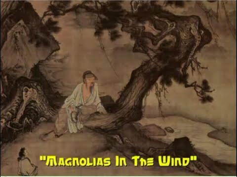 [not] GUQIN - Magnolias In The Wind (白玉蘭花在風中)