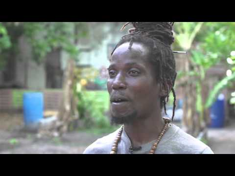 The Jamaica Sustainable Farm Enterprise Program