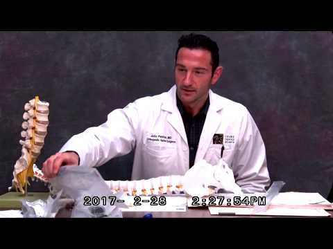 Lower Back Surgery: Spine Surgeon Explains Anterior Lumbar Interbody Fusion