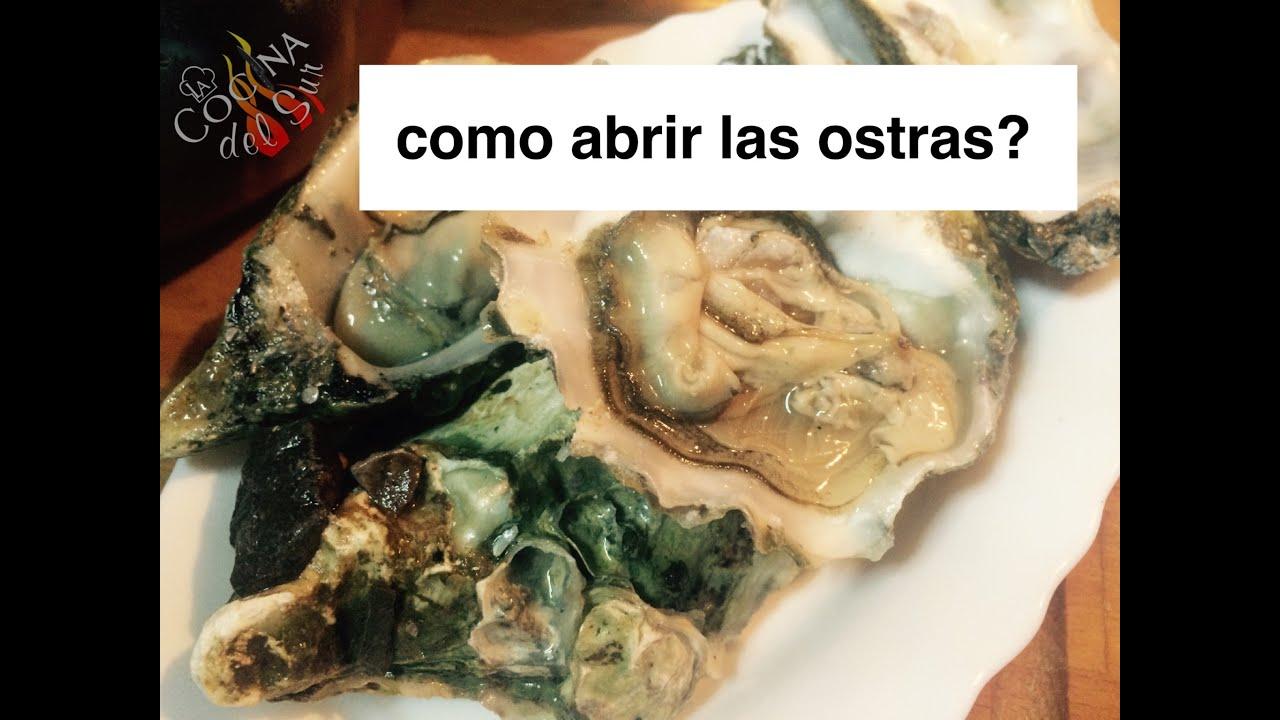 Como abrir ostras la cocina del sur youtube for Cocinar ostras