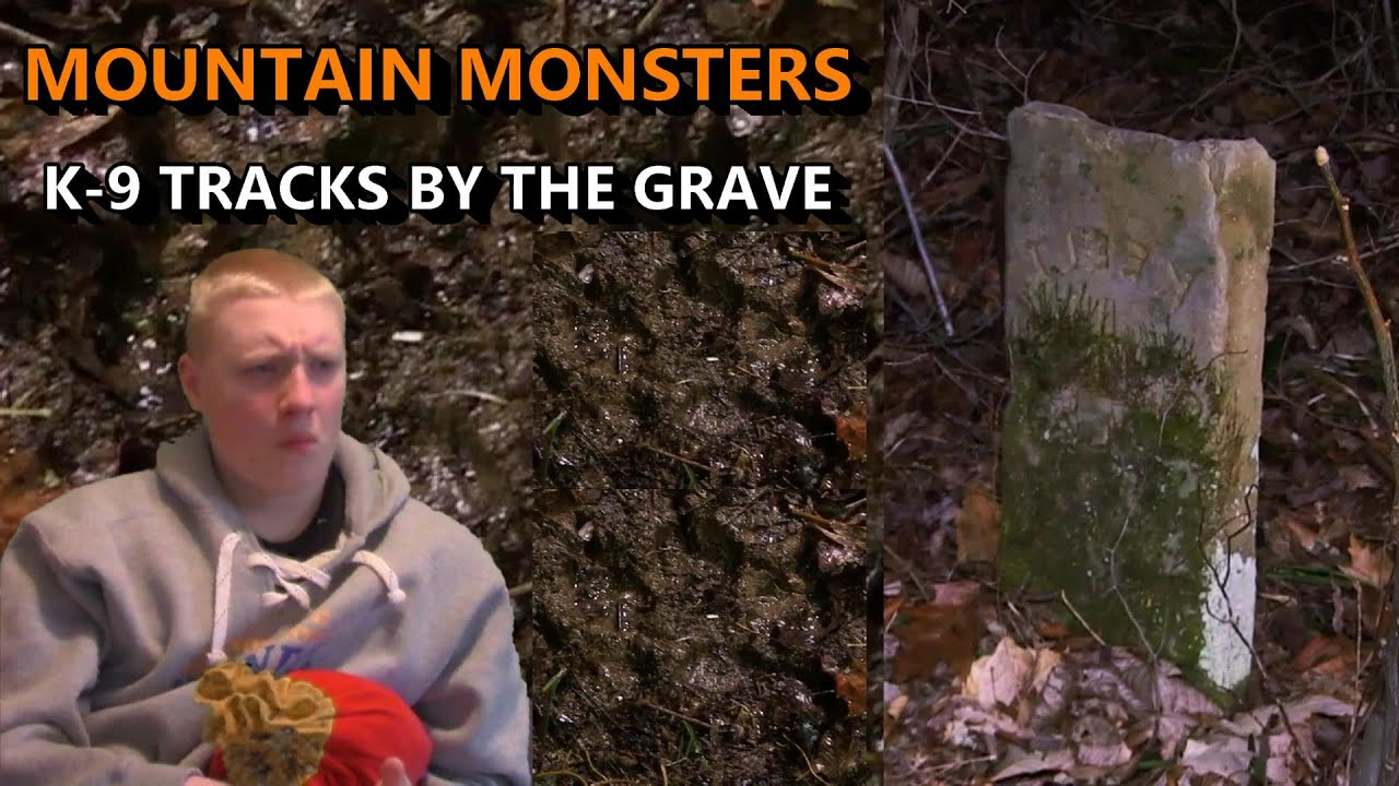 """Download Mountain Monsters 