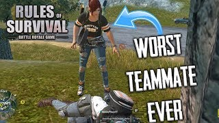 THE WORST RULES OF SURVIVAL TEAMMATE OF ALL TIME