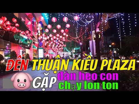 THUẬN KIỀU PLAZA past and now Garden mall | Sài Gòn Night & Today