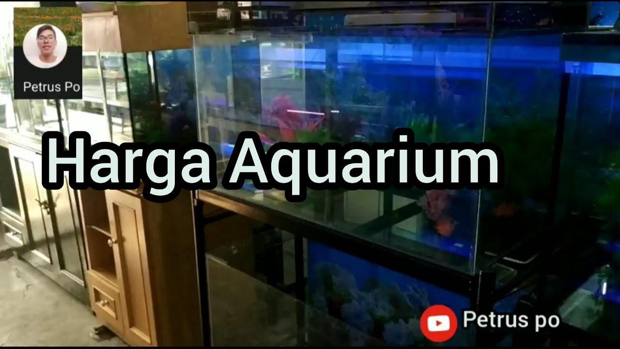 Harga Aquarium Di Medan Toko Jg Aquarium Padang Bulan Medan Youtube