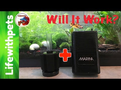 Testing A Battery Powered Air Pump With A Sponge Filter