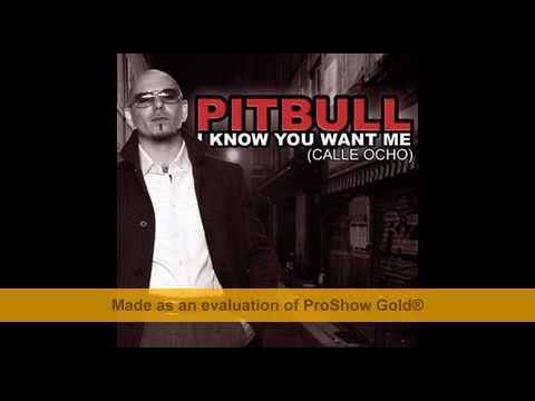 PitBull - I know you want me |download mp3 free - link in description|