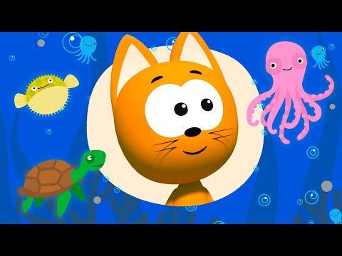Морская песнь мультфильм