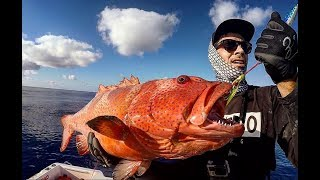 FISHING THE GREAT BARRIER REEF DAY 2! GT DOGTOOTH TUNA CORAL TROUT AND MASSIVE WRASSE!!!